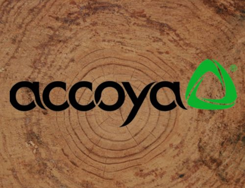 Accoya® wood is the material of choice at this year's Hampton Court Flower Show