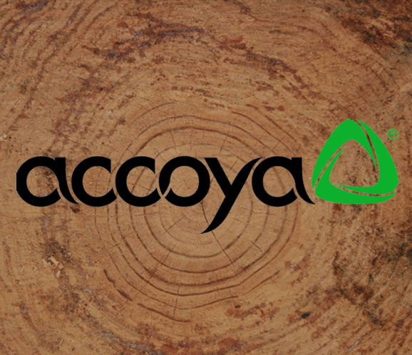 Accoya Wood