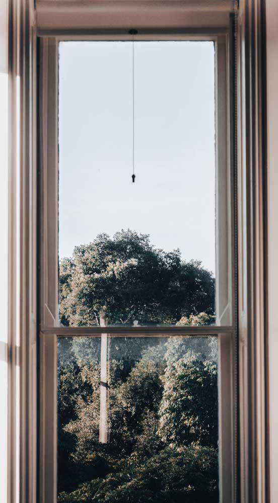 Sliding Sash Solutions. Looking through a Sash Window